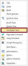 Microsoft Project 2010 Feature Rally: Inactive Tasks